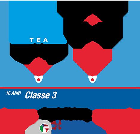 istituto-nobile-aviation-college-timeline-piano-di-studi-3anno